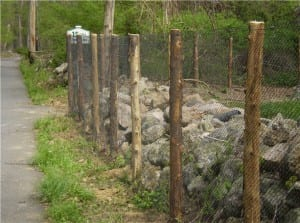 How To Choose The Right Deer Fencing In Connecticut