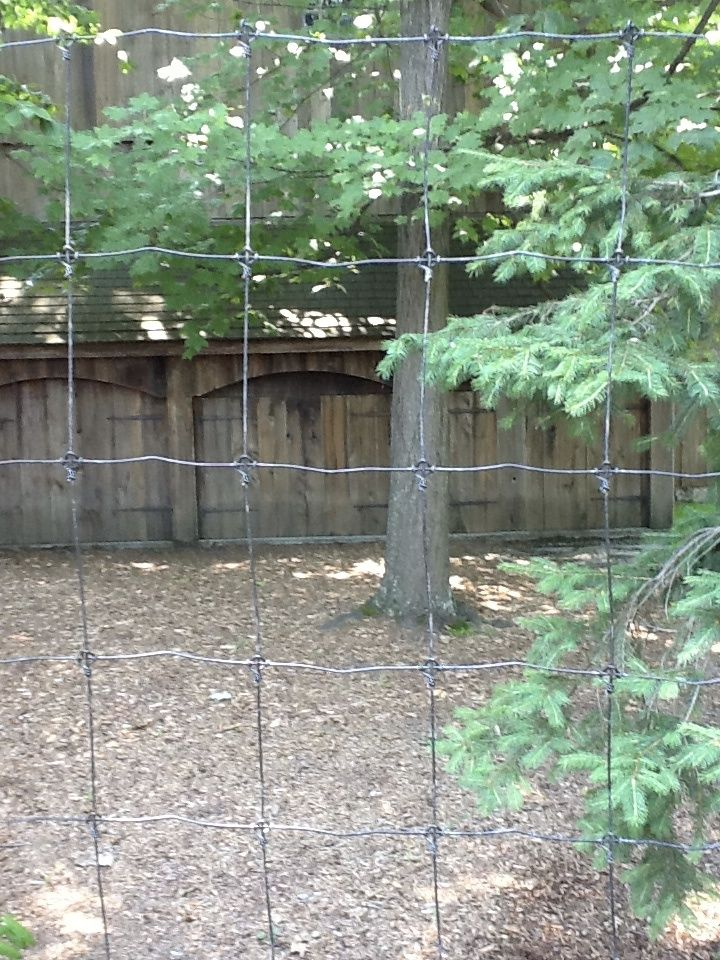 Deer Fence With Woven Wire In Greenwich Ct Riverside Fence